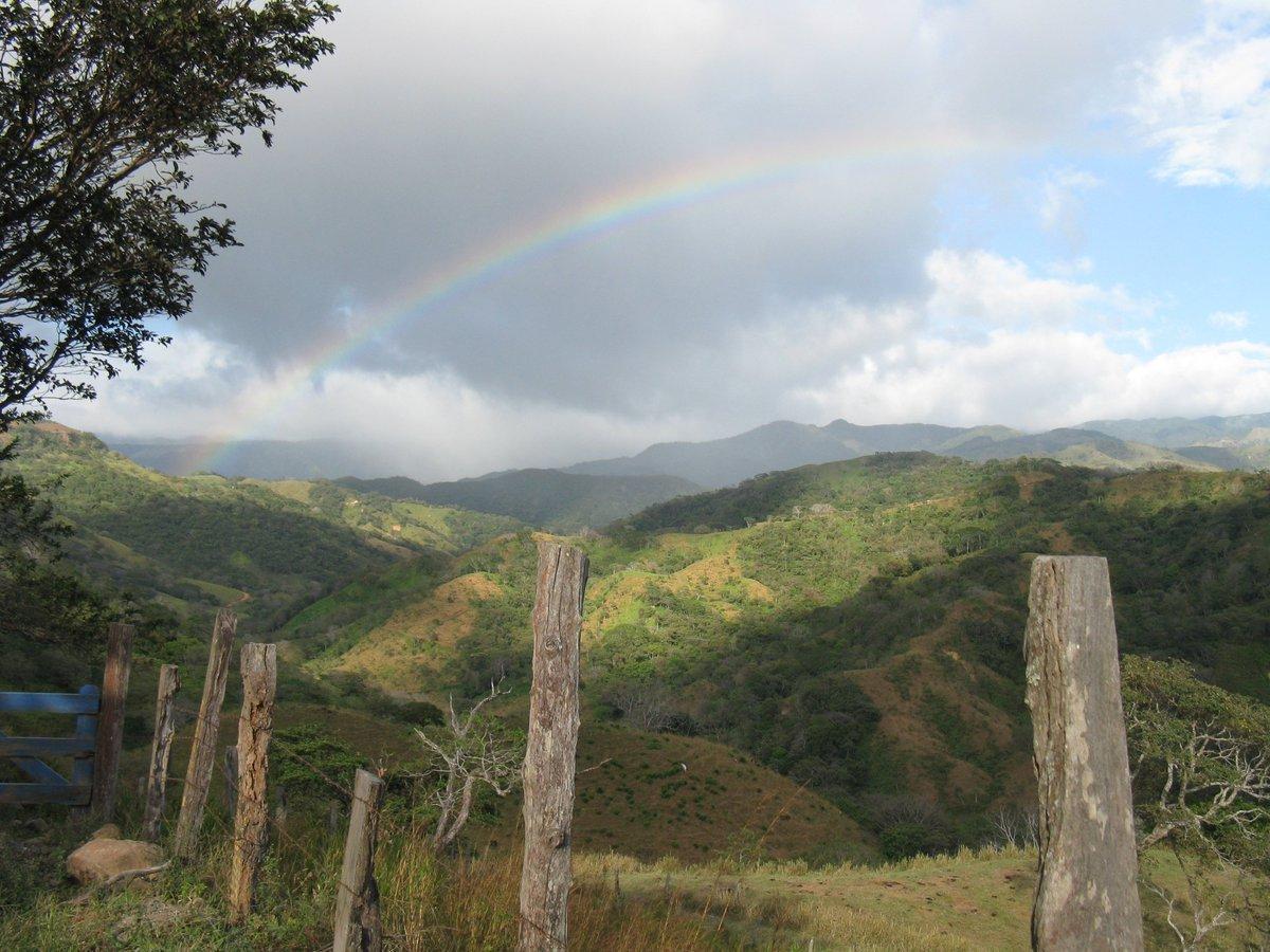 Rainbow, Savings Bonds